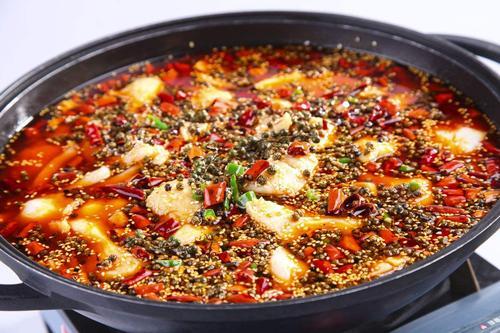 在绵阳哪里学习正宗火锅鱼技术?