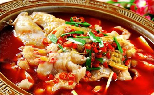 川菜汇鱼火锅培训能够给开店商带来很丰盛的赢