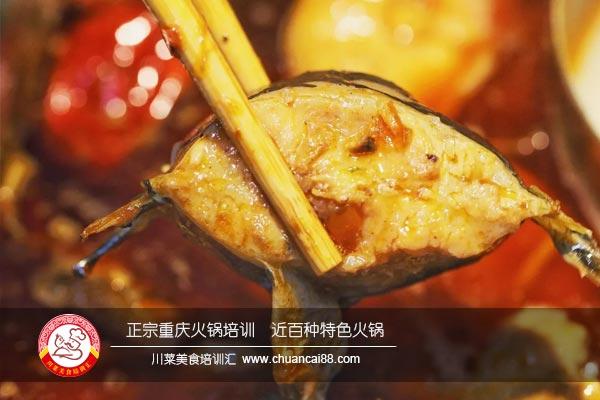 肥肠鱼火锅培训